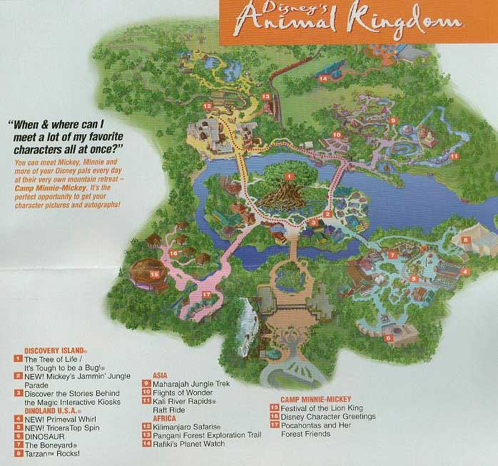 World - Animal Kingdom Map